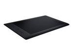 Tablette Graphique WACOM Wacom Intuos Pro Large - numériseur - USB, Bluetooth - noir