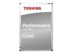 X300 Performance 10TB 3.5 SATA