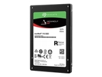 IronWolf 110 SSD 960GB SATA