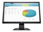 Moniteur HP HP P204 - écran LED - 19.5""